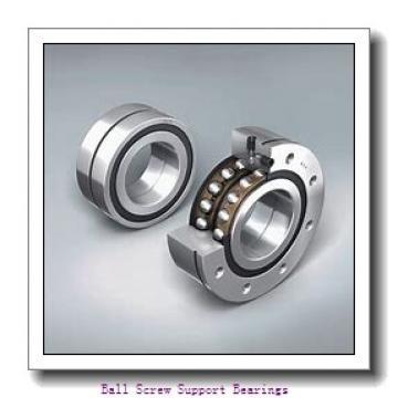 45mm x 100mm x 20mm  Nachi 45tab10db/gmp4-nachi Ball Screw Support Bearings
