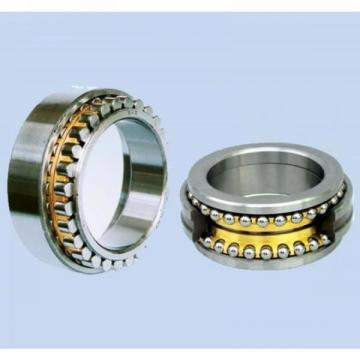 High Quality Spherical Roller Bearing (22313)